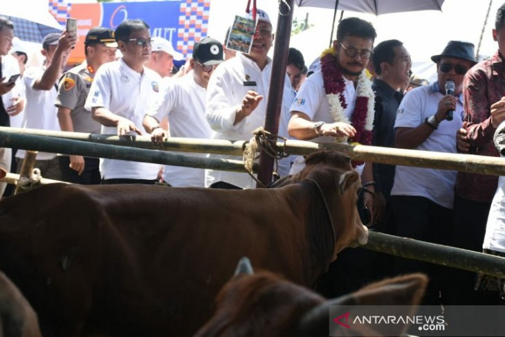 Government directs efforts to expedite meat profuction self-reliance