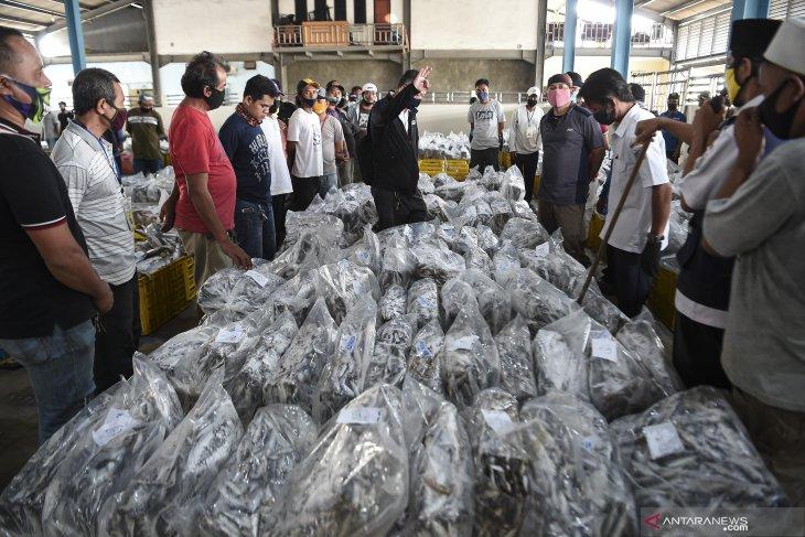 Tempat Pelelangan Ikan Muara Angke kembali dibuka