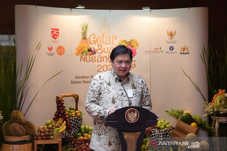 Indonesian economy in better shape than other countries: minister