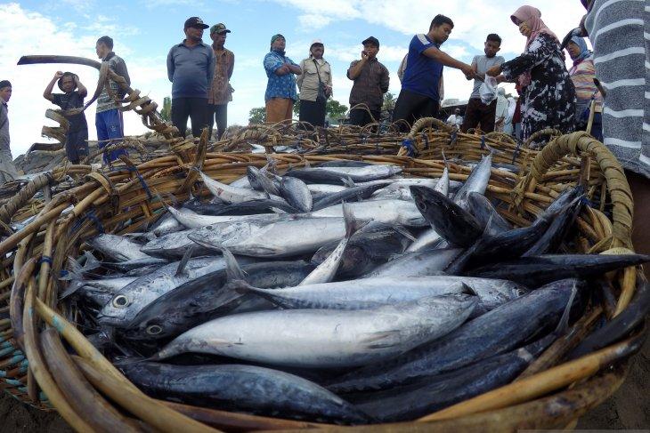 Nelayan kesulitan menjual hasil tangkapannya