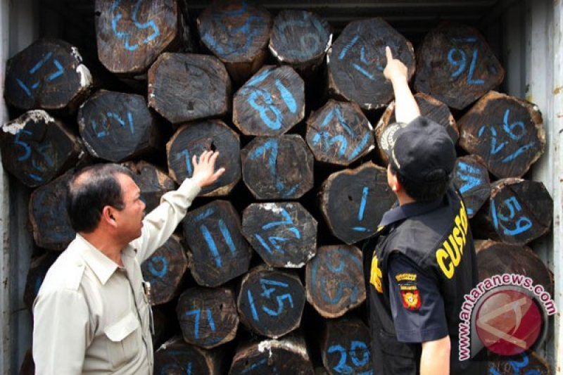 Kementerian LHK selidiki penyelundupan kayu asal Sorong