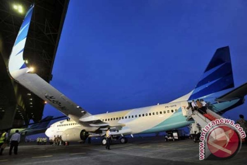 Ministry order B737NG inspections after cracks found