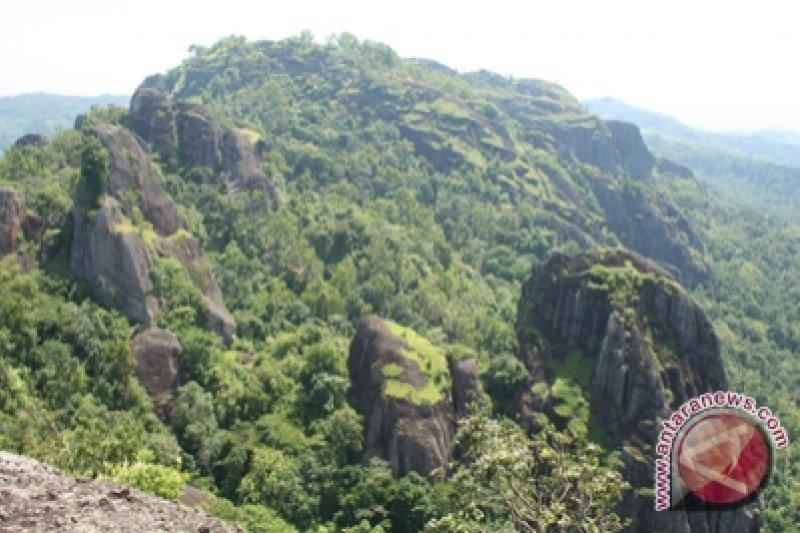 Disbudpar Kembangakan Wisata Alam Gunung Kidul Antara News