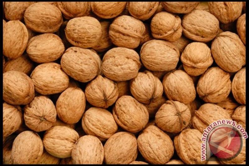 Khasiat kacang kenari untuk cegah diabetes