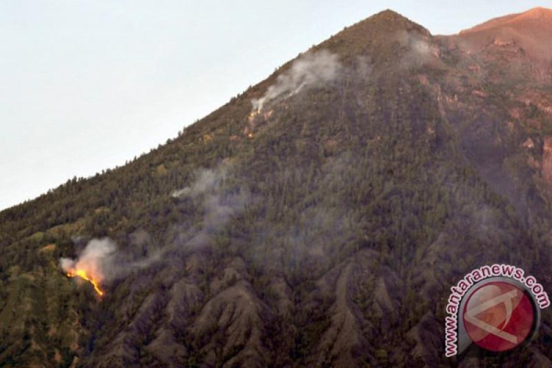 Puncak Gunung Batukaru Bali terbakar