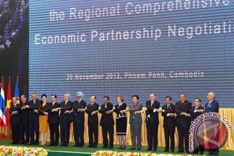 IGJ minta  pemerintah evaluasi draf kemitraan ekonomi regional