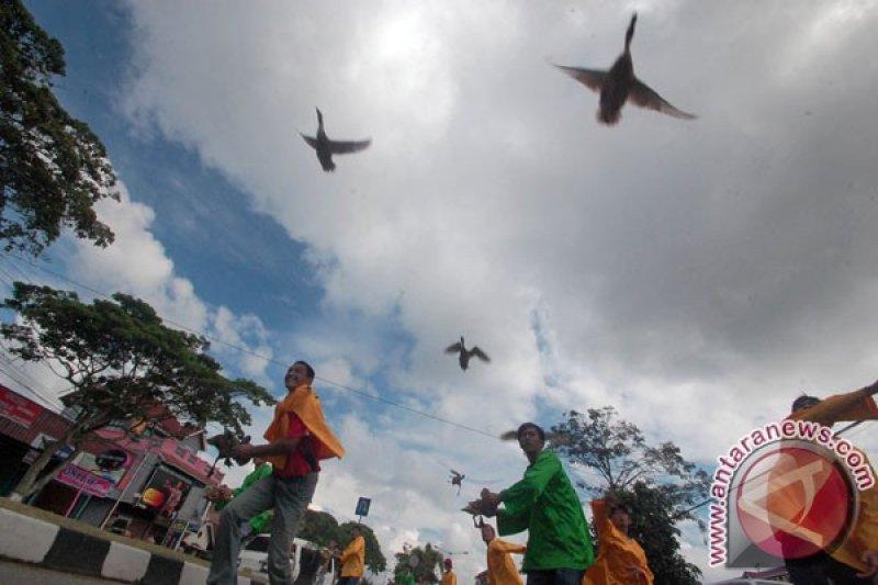 Masuk kalender wisata Sumbar, Disparpora Payakumbuh maksimalkan pacu itiak