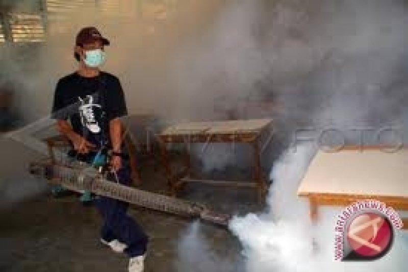 Yogyakarta mulai tingkatkan kewaspadaan penularan demam berdarah