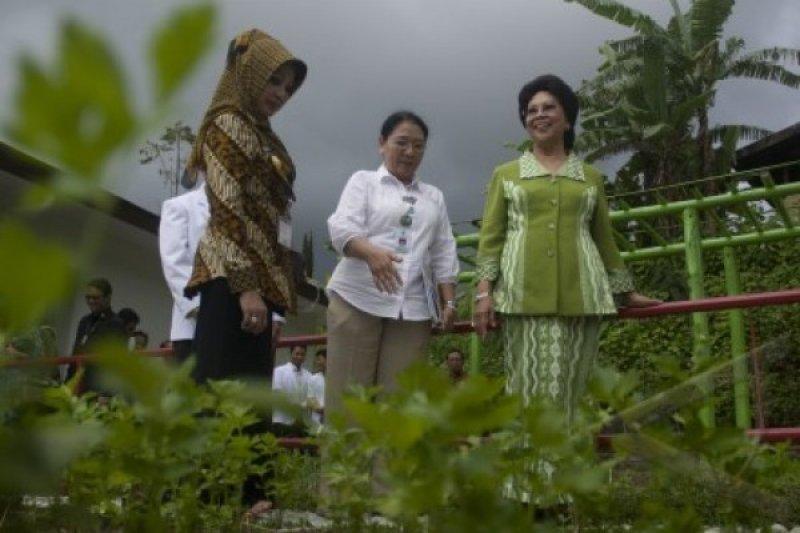 Pemprov Jateng Dorong Pemanfaatan Tanaman Obat Keluarga