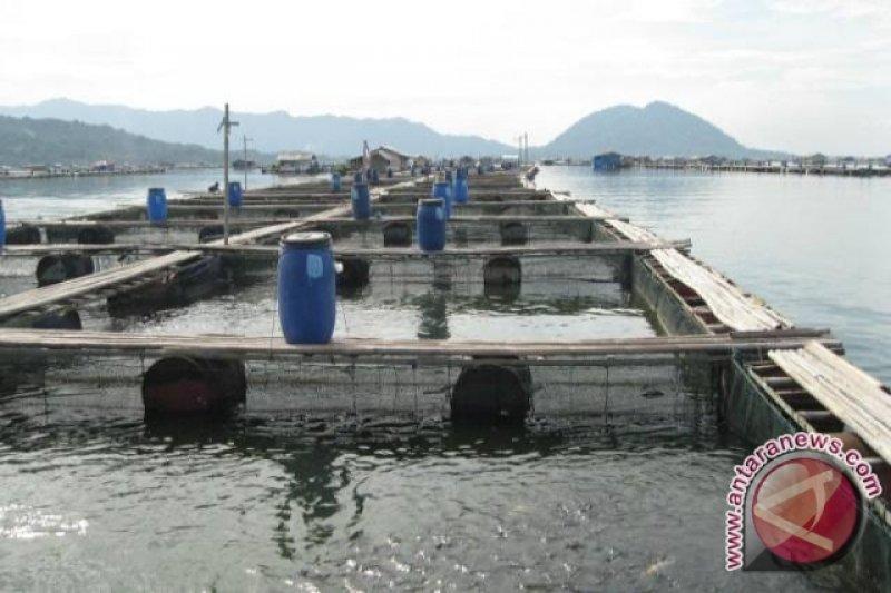Pemprov Sumsel tingkatkan  pemanfaatan perikanan tangkap perairan umum
