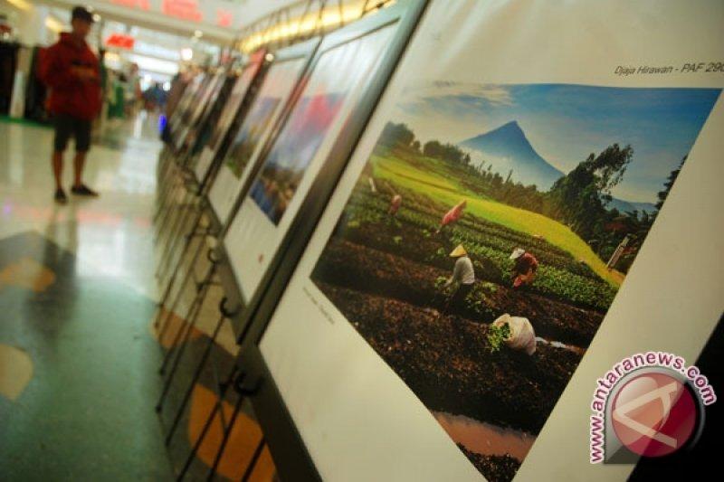 "64 pelukis pameran ""the balance"" di Borobudur"