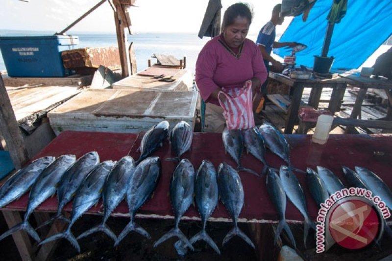 Cuaca Maluku dipengaruhi tekanan rendah di utara Australia