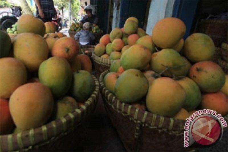Mentan bawa benih senilai Rp27 miliar untuk masyarakat Cirebon