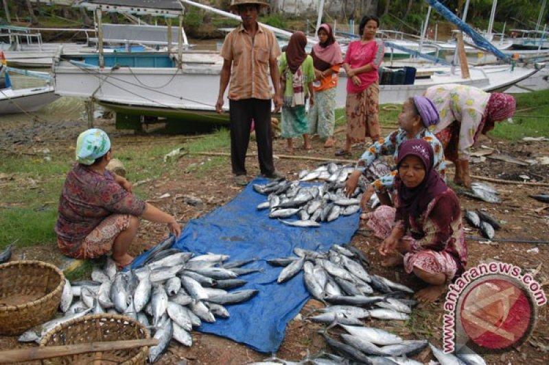 DKP Mataram akan latih istri nelayan mengolah ikan