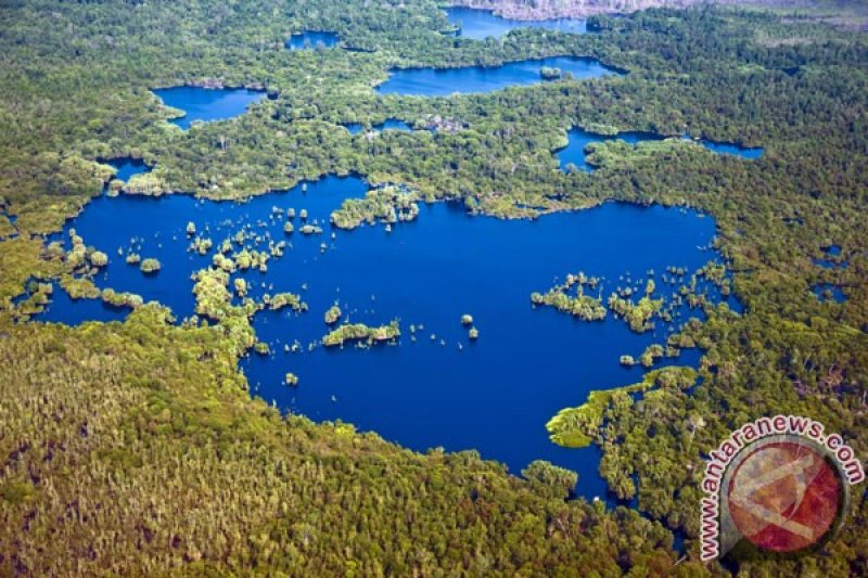 Taman Nasional Kepulauan Togean Sulteng diusulkan jadi cagar biosfer
