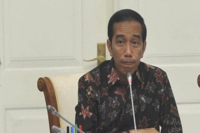 Presiden Pimpin Rapat Terbatas Bahas Perikanan-Kelautan