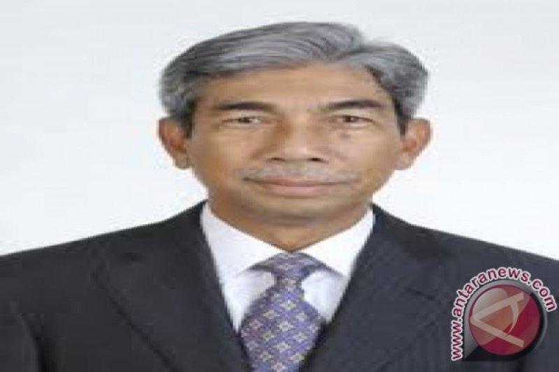 Wamenlu: diplomasi Indonesia-Mesir perlu dioptimalkan