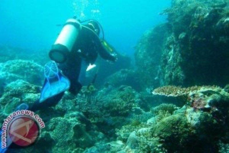 Para penyelam bersihkan sampah plastik di laut Buleleng