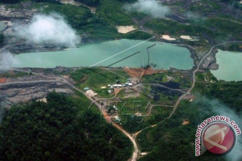Banyak investor Cina minati pertambangan di Indonesia