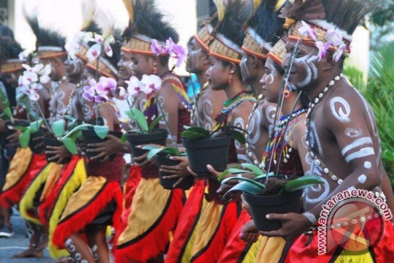 Kementerian Pertanian: produksi Anggrek Papua masih minim