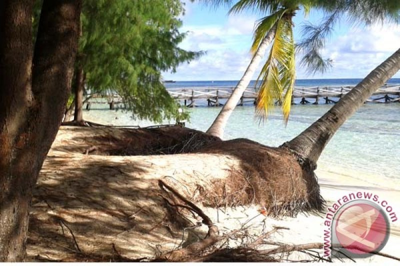 Pulau Kapoposang tawarkan paket wisata lepas tukik