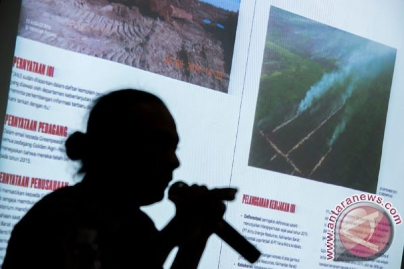 Tips Greenpeace Cegah Kebakaran Hutan