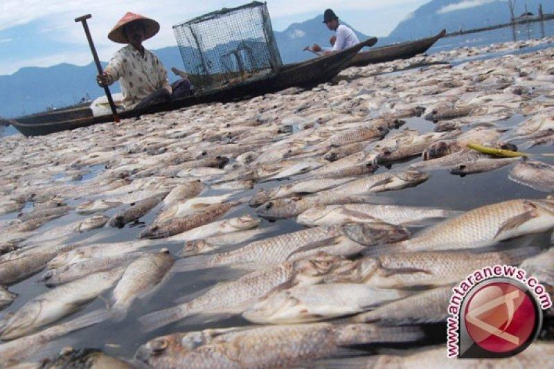 Keramba jaring apung tak berfungsi di Danau Maninjau dibongkar