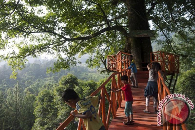 Liburan Tahun Baru Di Bogor Lokasi Wisata Alam Ini Menanti
