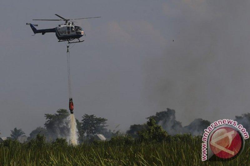 BNPB optimalkan patroli udara atasi kebakaran hutan dan lahan
