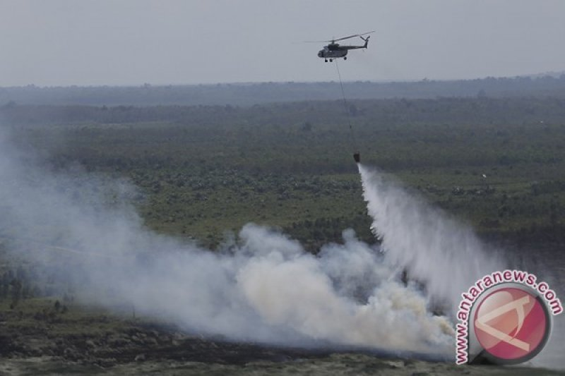 Ratusan hektare lahan gambut Rokan Hilir terbakar
