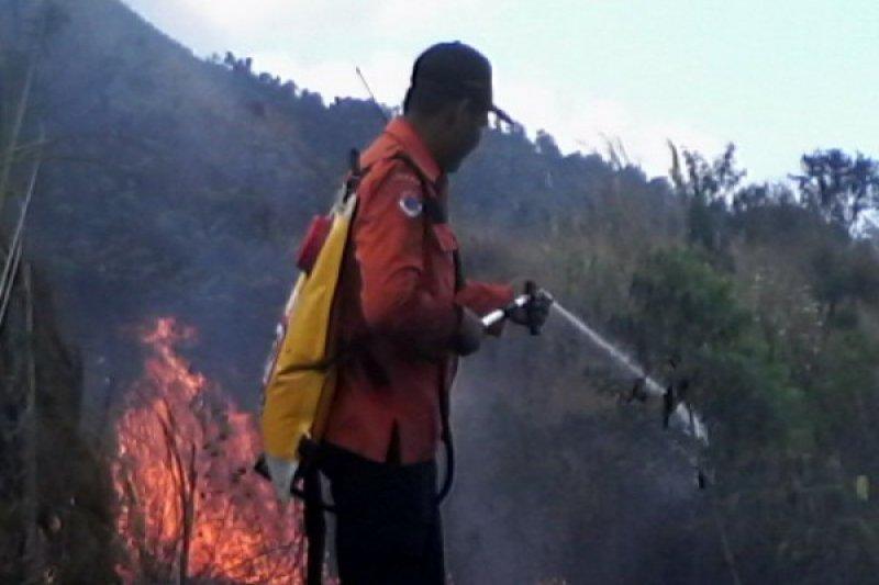 BKSDA: Kebakaran hutan di Gunung Guntur mulai padam