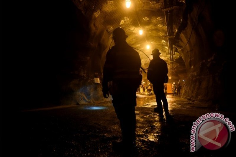 Tiga Karyawan subkontraktor Freeport Hirup Gas Beracun, Seorang Tewas