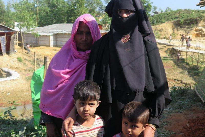Indonesia diminta manfaatkan keanggotaan DK-PBB akhiri krisis Rohingya