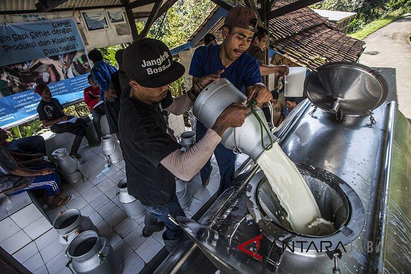 Kementan: Konsumsi susu perlu ditingkatkan