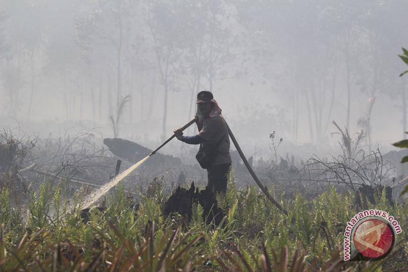 BMKG deteksi 140 titik panas di Riau