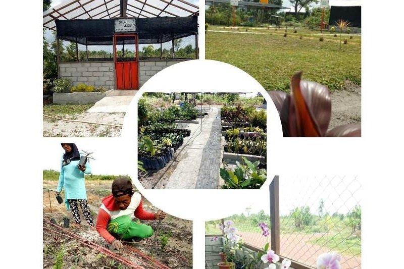 Kebun raya terluas di Indonesia ditarget 2020 di Kotim