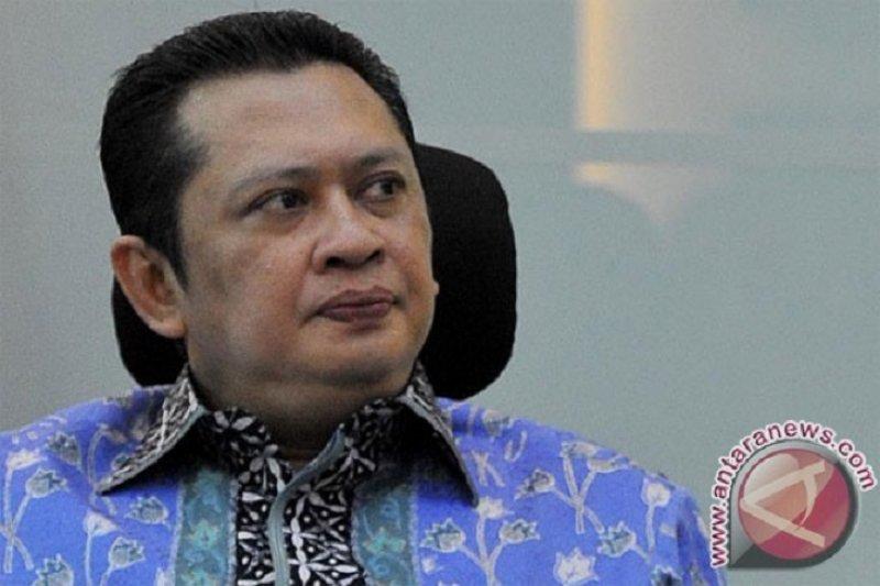 Papua Terkini - Ketua DPR dukung pembatasan sementara akses turis mancanegara ke Papua