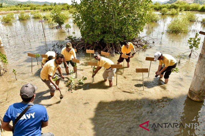 Teluk Lembar Lombok Barat dijadikan KEE mangrove
