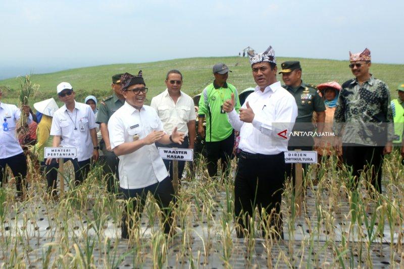 Mentan fokus target swasembada bawang putih pada 2021