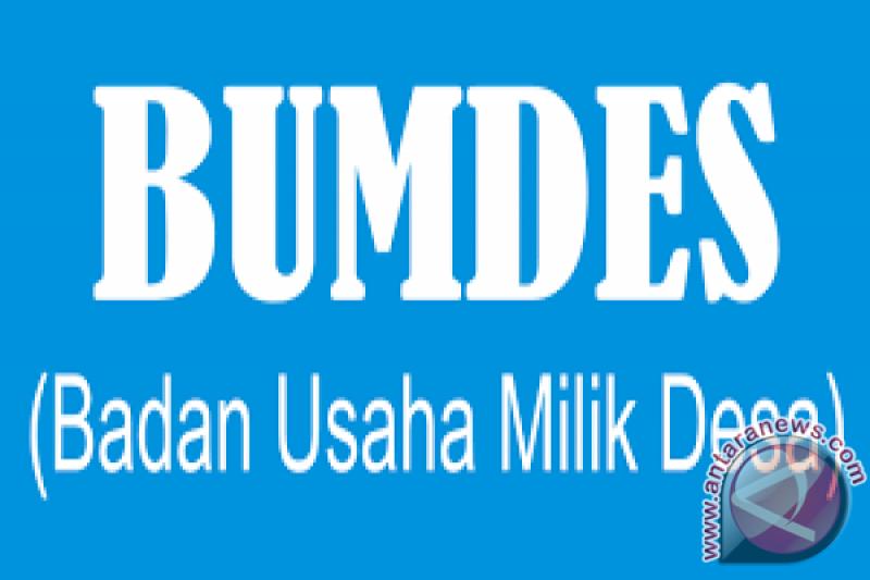Pemprov Sumsel dorong pembentukan dan peningkatan  kinerja BUMDes