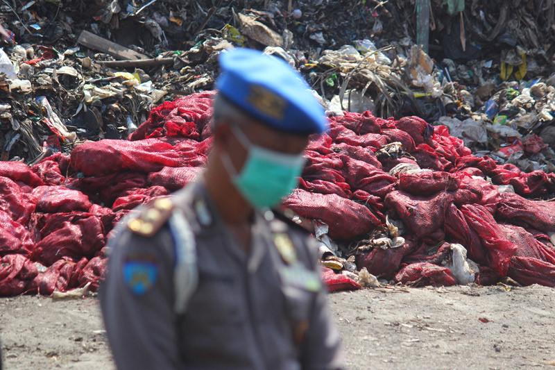 Pemusnahan bawang bombai impor