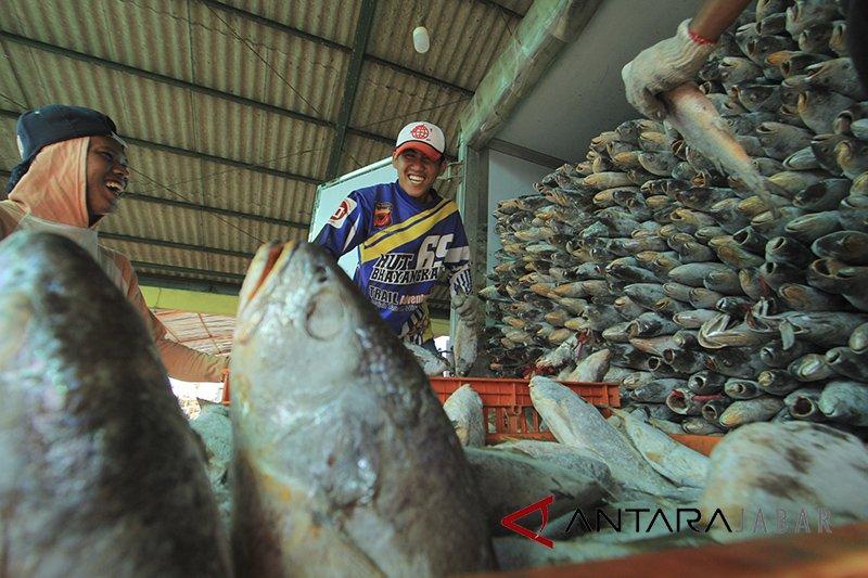 Produksi ikan di Indramayu 25,9 ribu ton