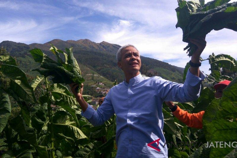 Ganjar pasang badan lindungi petani tembakau