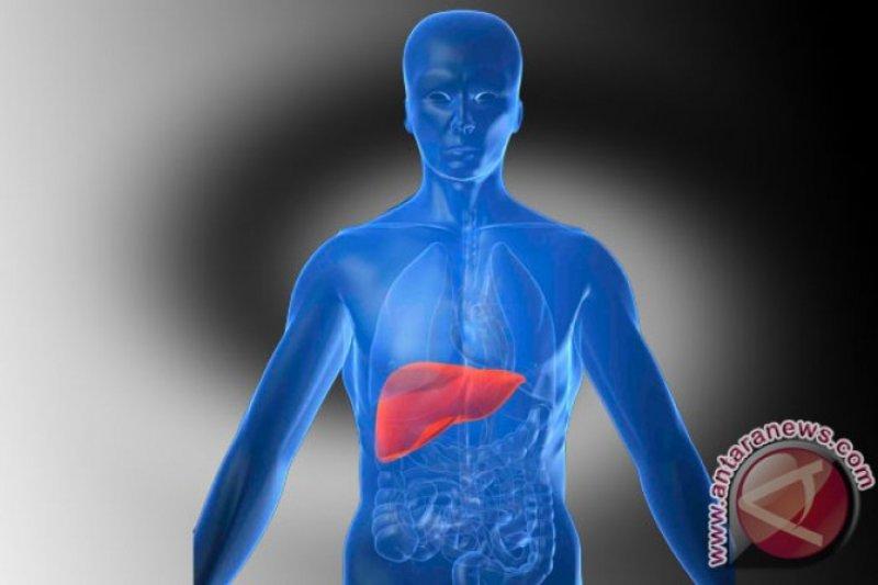 FKUI: Masyarakat kadang tak sadar idap hepatitis