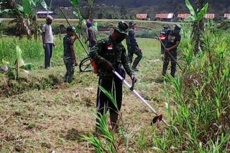 TNI buka 300 hektare lahan sawah baru di Musi Banyuasin