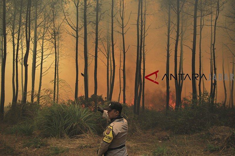 Selama Agustus, kebakaran hutan dominasi bencana alam di Jabar