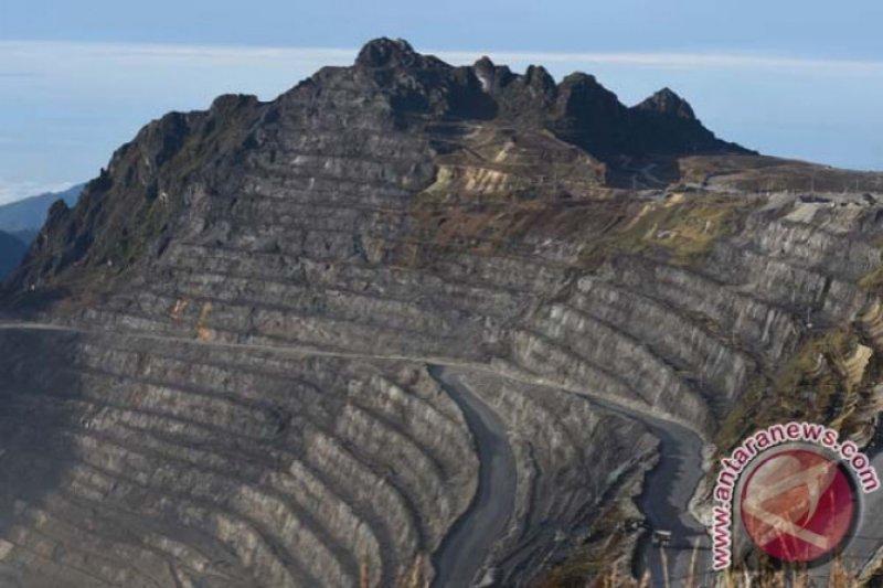 Jonan minta area bekas tambang Freeport ditanami Merbau dan Trembesi