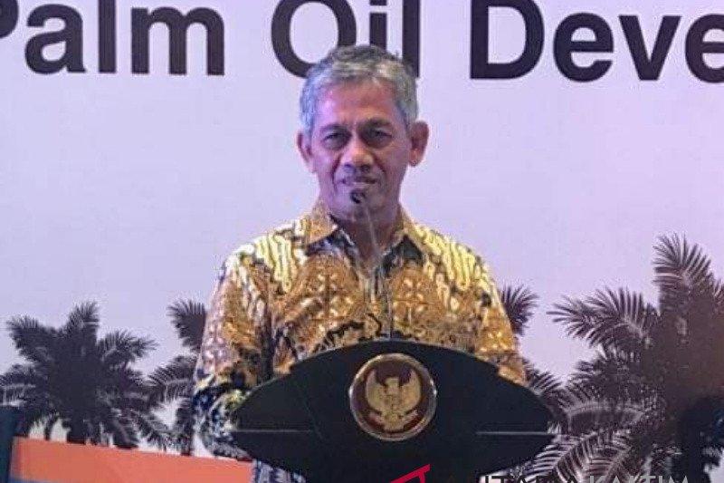 Gapki sebut konsumsi minyak sawit domestik pada Mei masih positif