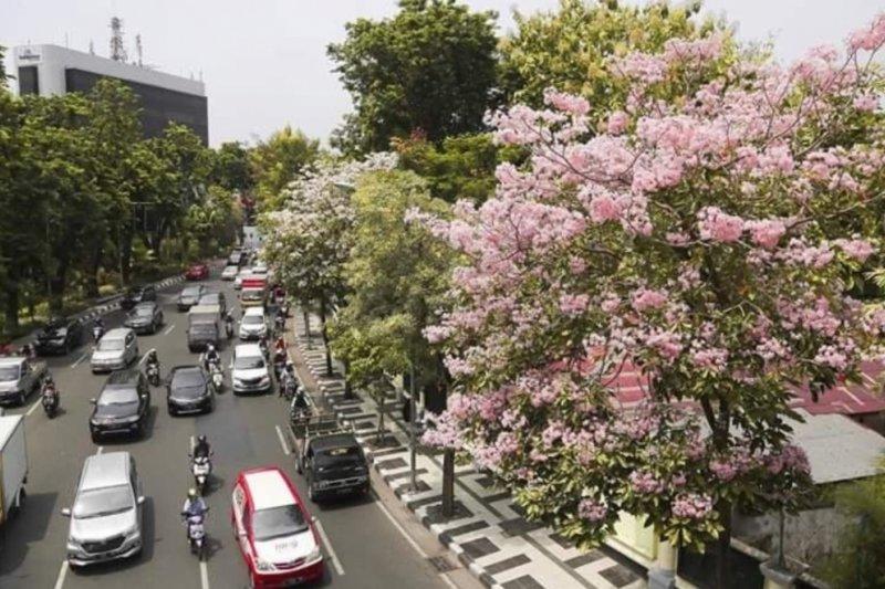 Delegasi Lee Kuan Yew belajar tata kota Surabaya