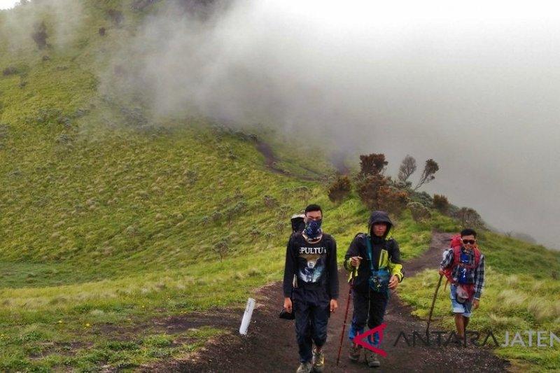 Pulihkan ekosistem, jalur pendakian Gunung Merbabu ditutup sebulan